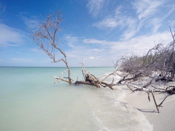 Walking from Clearwater Beach to Caladesi Island