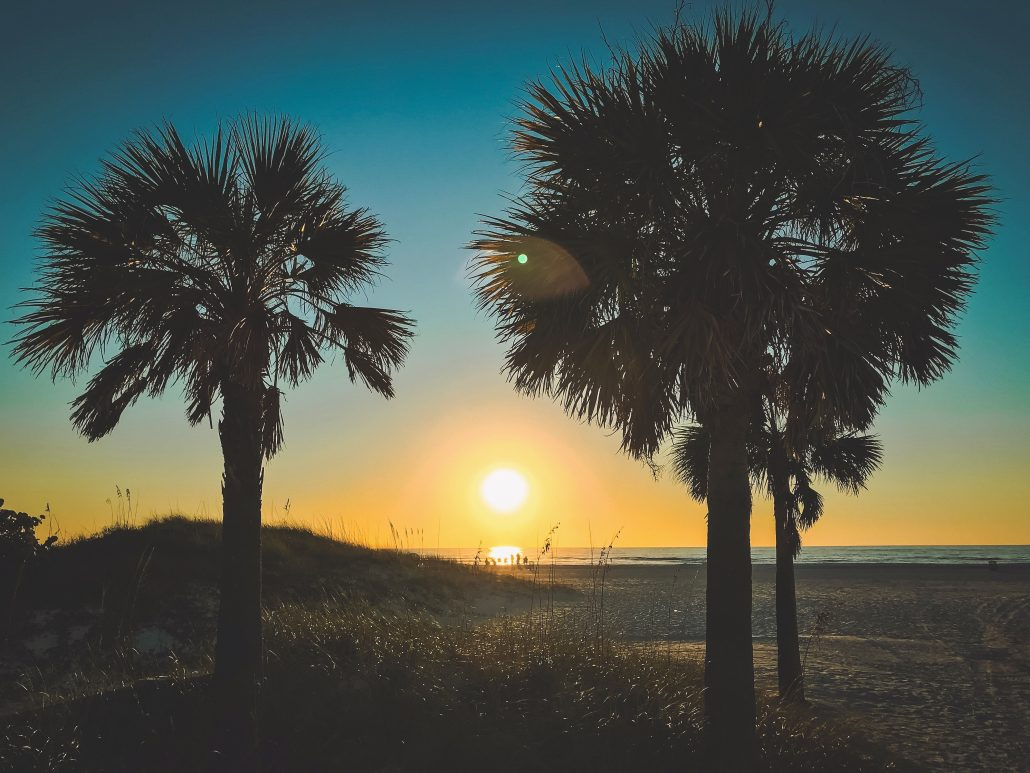 clearwater beach christmas 2018 clearwater beach blog - Beach Christmas Pictures