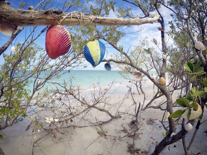 Clearwater Beach Views - Walk to Caladesi Island