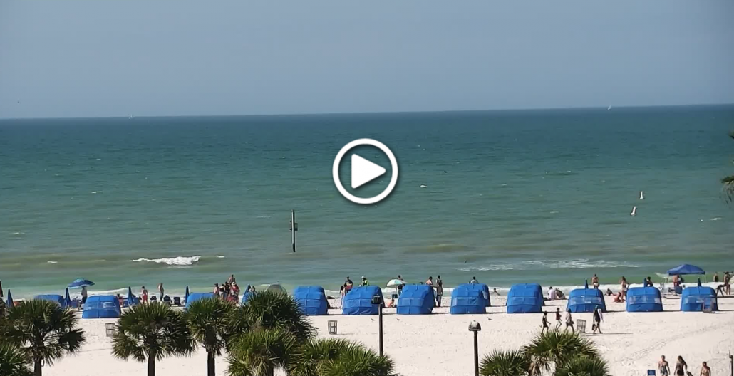 Crabby's Dockside Clearwater Beach Webcam
